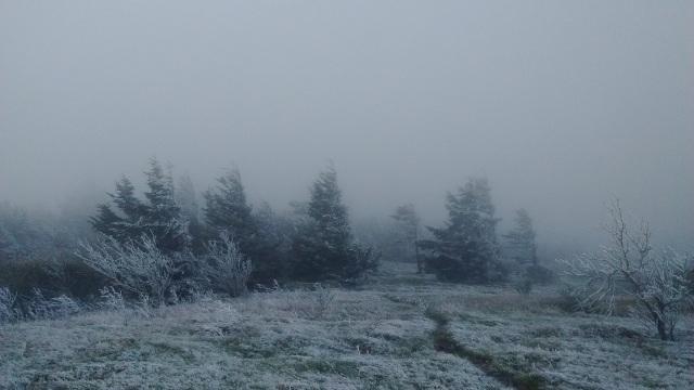 Quest frost wind Ben Herron